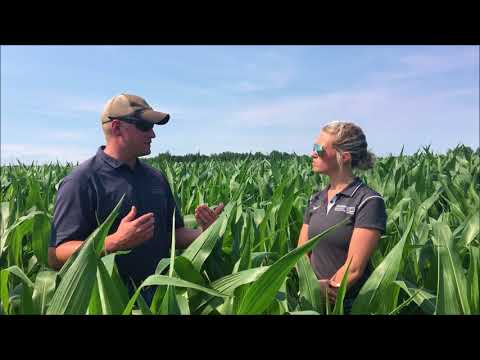 SEI Crop Tour Field Report Edition 5