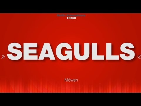 Seagull - SOUND EFFECTS - Möwen Sea Ocean Ambience SOUND