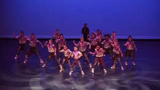 TDS Mini Hip Hop Team- 2018