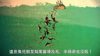 【守護海洋】打開鮪魚罐頭的殘酷秘密