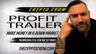 How To Make Money With Profit Trailer In A Down Market