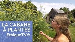Juliette vit de la culture de ses plantes sauvages !