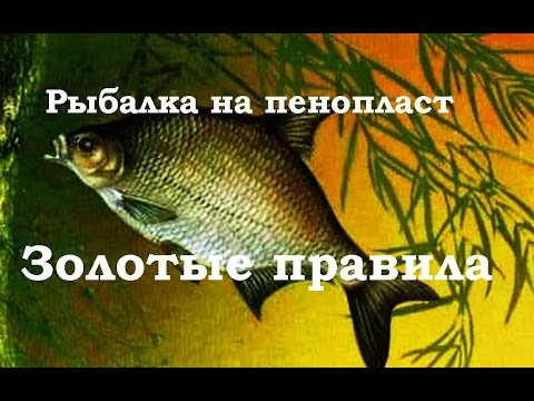 Рыбалка на пенопласт Золотые правила