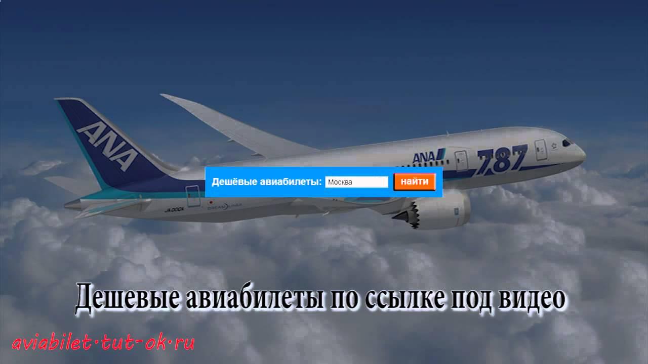 Билеты на самолет в черногорию дешево авиабилеты в сша акция