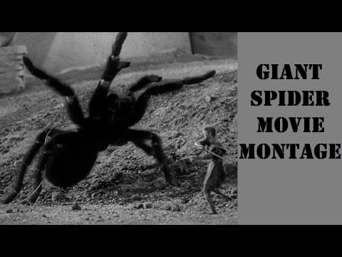 GIANT SPIDER Movie Montage