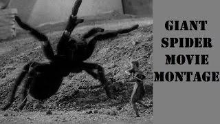 GIANT SPIDER Movie Montage