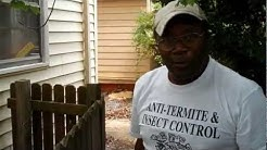 How to get rid of termites! A passionate exterminator gets it done