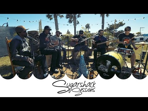 Fear Nuttin Band - Move Positive (Live Acoustic) | Sugarshack Sessions
