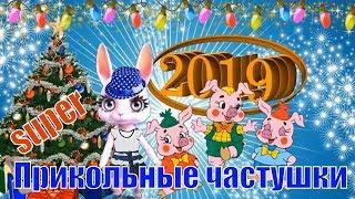Частушки на Новый 2019 год СВИНЬИ🐖Частушки про свиней и о свиньях🐖Свинья 2019