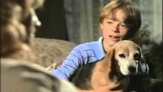 Shiloh 2: Shiloh Season Trailer 1999