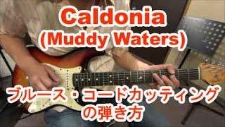 ギター初心者講座!Caldonia(Muddy Waters)/ブルースのコード・カッティングの弾き方