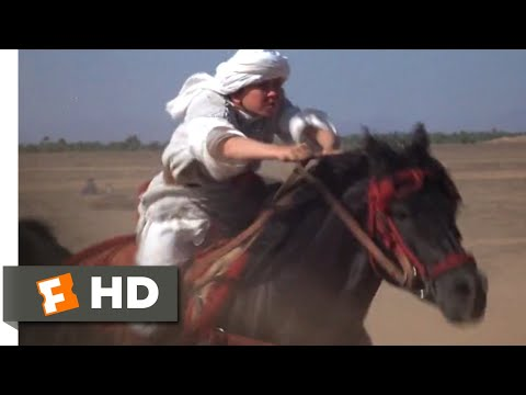 The Black Stallion Returns (1983) - The Race Begins Scene (9/12) | Movieclips