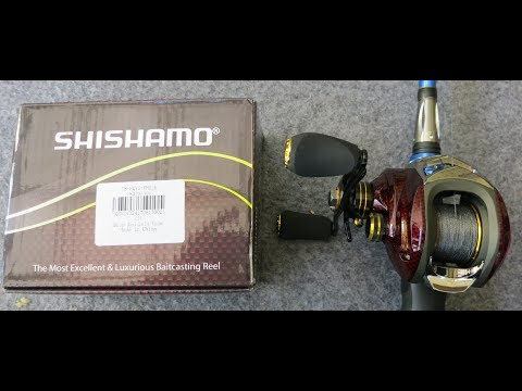 Shishamo review (is it worth the money)