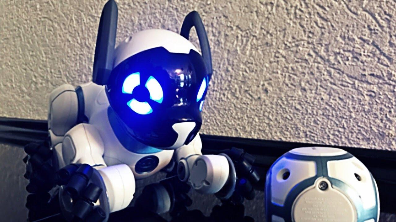 der intelligente roboter hund chip wowwee dein neuer bester freund youtube. Black Bedroom Furniture Sets. Home Design Ideas