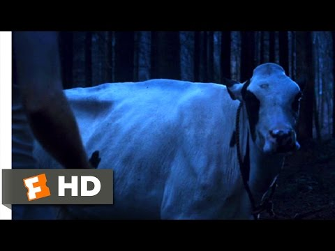 Shrooms (2007) - A Talking Cow Scene (2/10) | Movieclips