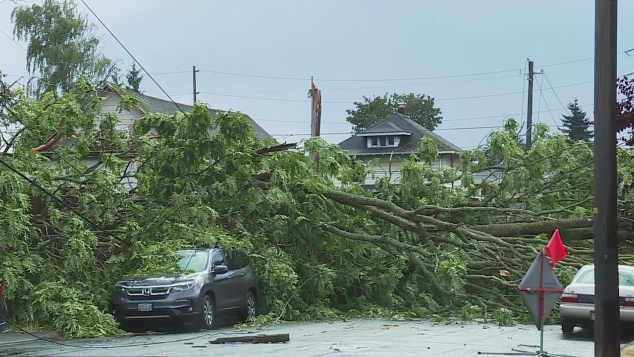Tornado topples trees, damages homes
