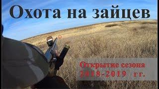 Охота на зайцев - Открытие сезона 2018-2019 гг