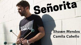 Señorita (Marimba Pop Cover) - by Shawn Mendes, Camila Cabello