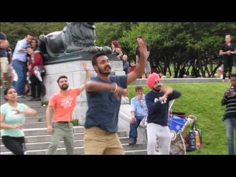 Bhangra Flash Mob | Tam Tams | Montreal | CANADA