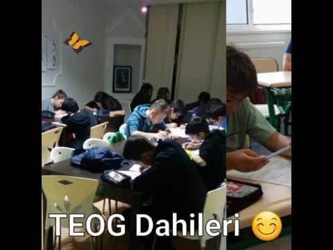 TEOG Dahileri