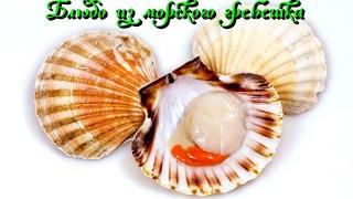 Блюдо из морского гребешка