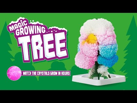 Magic Growing Tree Time Lapse from Tobar