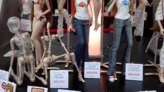Culture Japan Smart Doll Mirai Suenaga Booth Display Kizuna Yumeno Anime Expo 2014