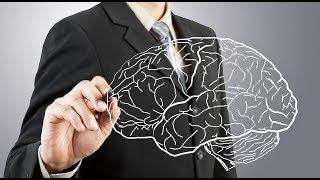 культура, социум, общение загружает сервер - мозг ребенка, создает человека