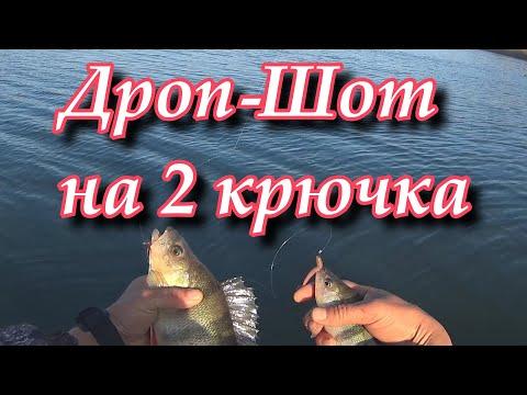Вопрос: Как ловить рыбу с помощью метода дроп шот?