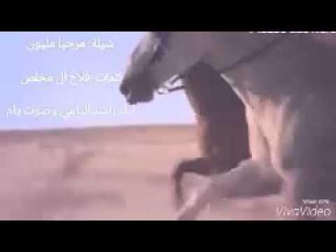 تحميل شيلة صالح اليامي mp3