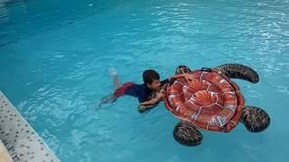 Аква-черепаха