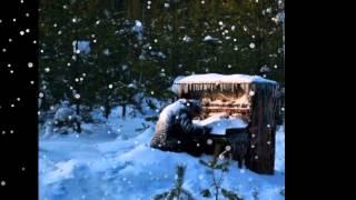 Людвиг ван Бетховен ' Мелодия Слёз'.