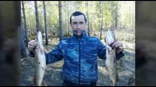 Рыбалка, весна, Нягань, ссор, Обь, щука, язь. Рыбалка, рыбалка весна, Нягань, ссора, Обь, рыбалка на
