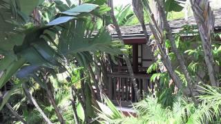 Catamaran Resort and Spa - My Vacation Edit