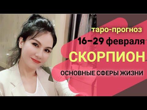 СКОРПИОН ТАРО ПРОГНОЗ 16~29 ФЕВРАЛЬ 2020. Основные сферы жизни
