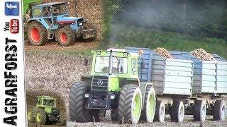 Kartoffelernte 2017 mit YOUNGTIMER Traktoren! - MB Trac 1300/1500 und Eicher 3108 Turbo