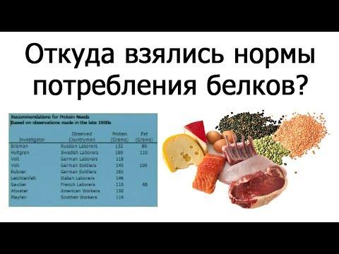 Нормы потребления белков человеком (Джон МакДугалл)