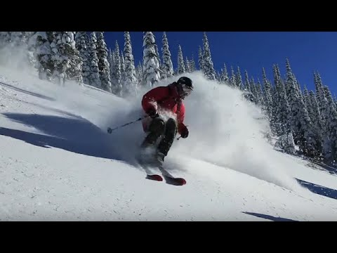 Island Lake Catskiing: Powder Therapy