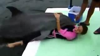 Девушка не думала что дельфин на такое способен