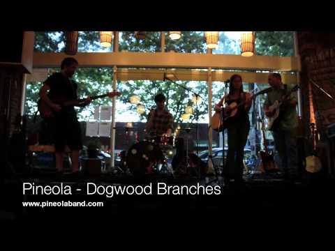 Pineola - Dogwood Branches - Enlighten Cafe Aug 2 2012.m4v