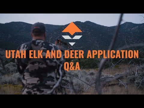 Utah Elk And Deer Application Strategy — Q&A