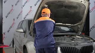 Cum se inlocuiesc set de reparație rulment sarcină amortizor pe SKODA SUPERB 2 TUTORIAL | AUTODOC