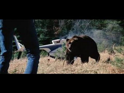 Grizzly  Christopher George, Andrew Prine  film hd1080p