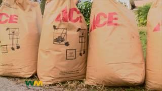 Waste Management Yard Waste Collection