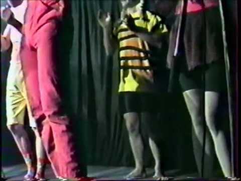 Laissez-moi danser Los Bingaros Live at the Théâtre des Docks of Boulogne sur le Mer.