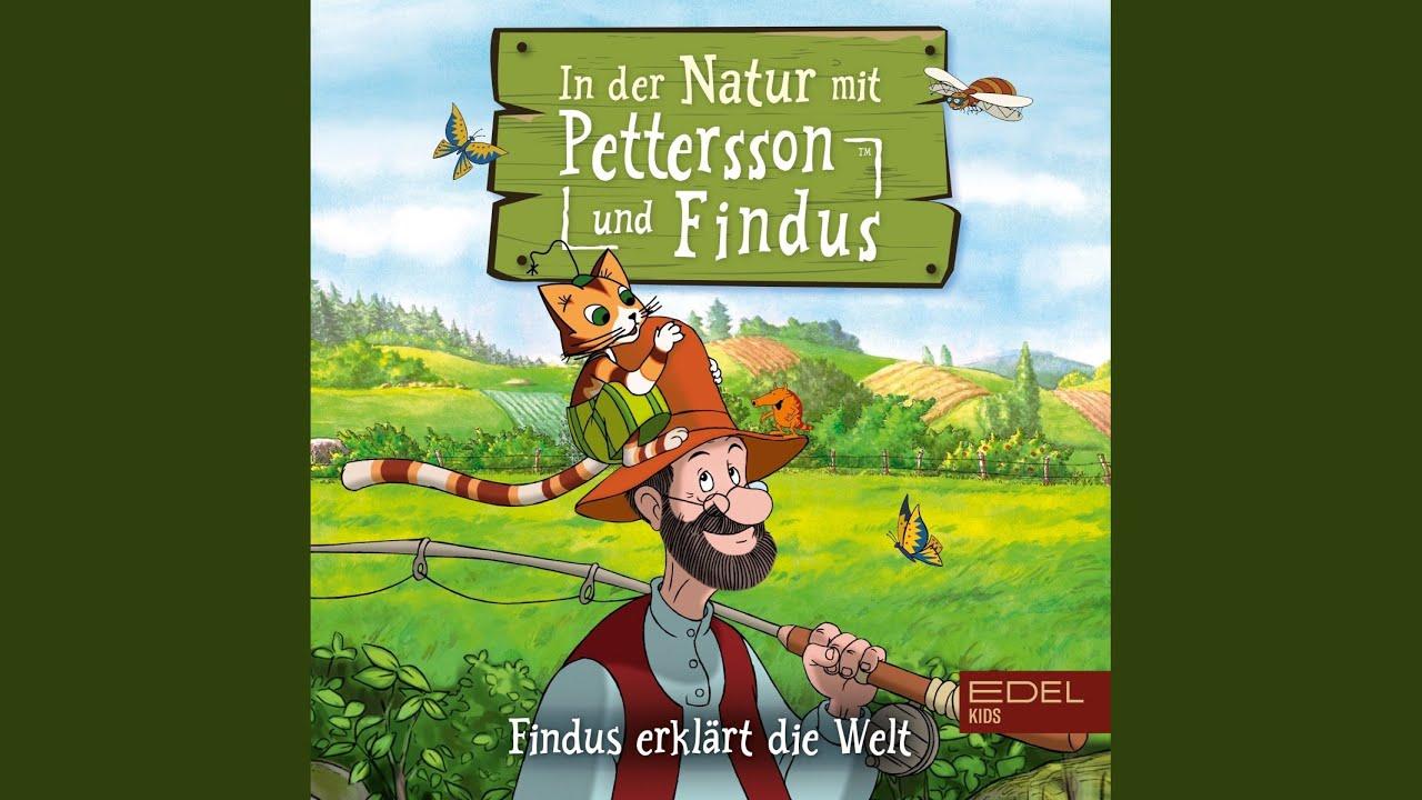 Youtube Petterson Und Findus