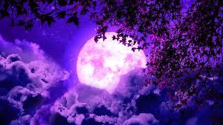 Deepest Sleep Music 432Hz   Deep Healing Miracle   Sleeping Meditation Music   Positive Energy Sleep