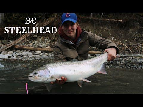 Float Fishing For BC Winter Steelhead