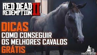Red Dead Redemption 2 -  DICAS - COMO CONSEGUIR O GREY ARABIAN E O GOLDEN TURKOMAN GRÁTIS!