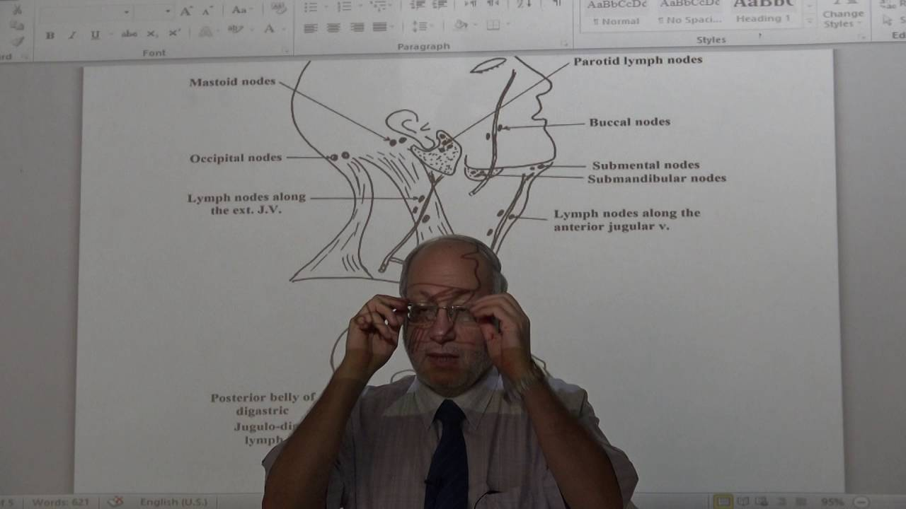 Anatomy - Lymphatic drainage of Head & Neck - part 1 - YouTube